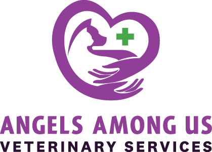 Angels Among Us Veterinary Services